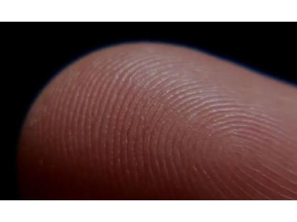 关于半导体生物指纹头,你需要知道这些